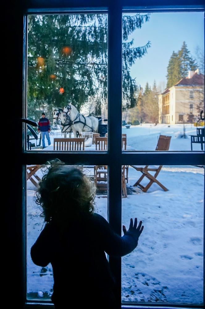 bebe Iarna la zabala-1