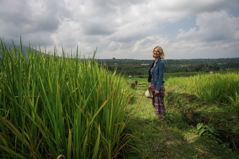 BALI plantatie orez