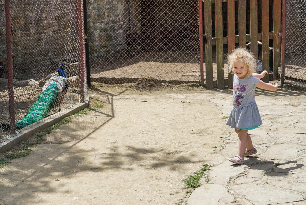 Veliko Arbanasi cu copii-2