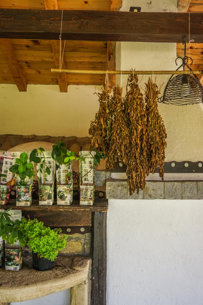 impresii villa bulgara eco madara-30