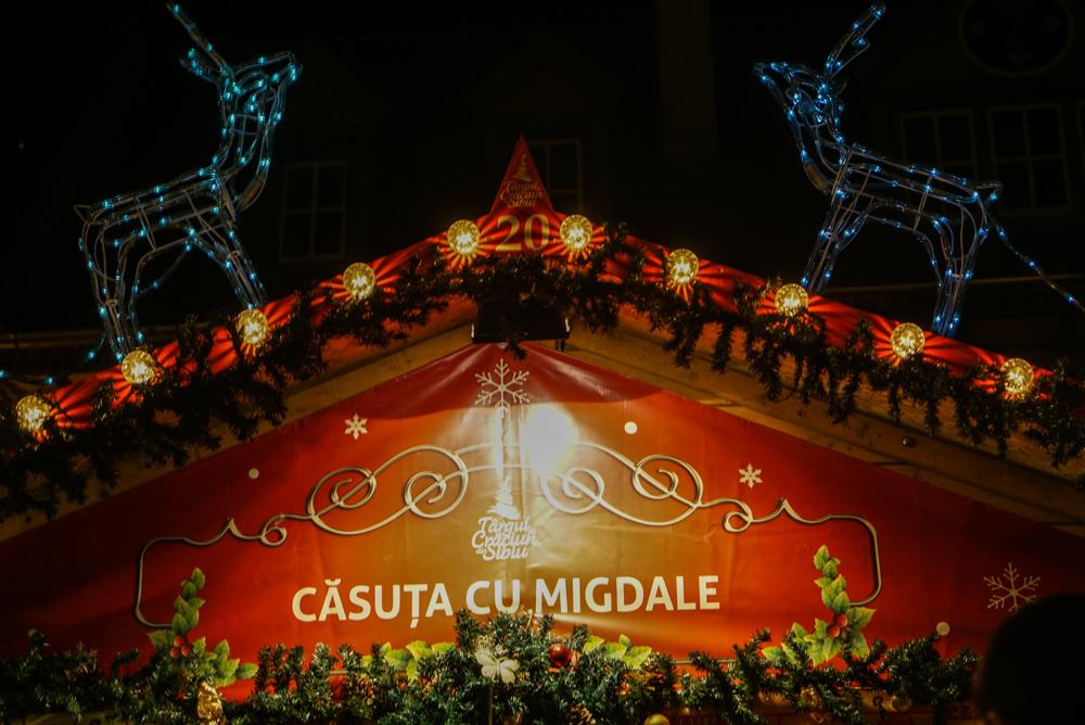 Piata de Craciun Sibiu 2015-15