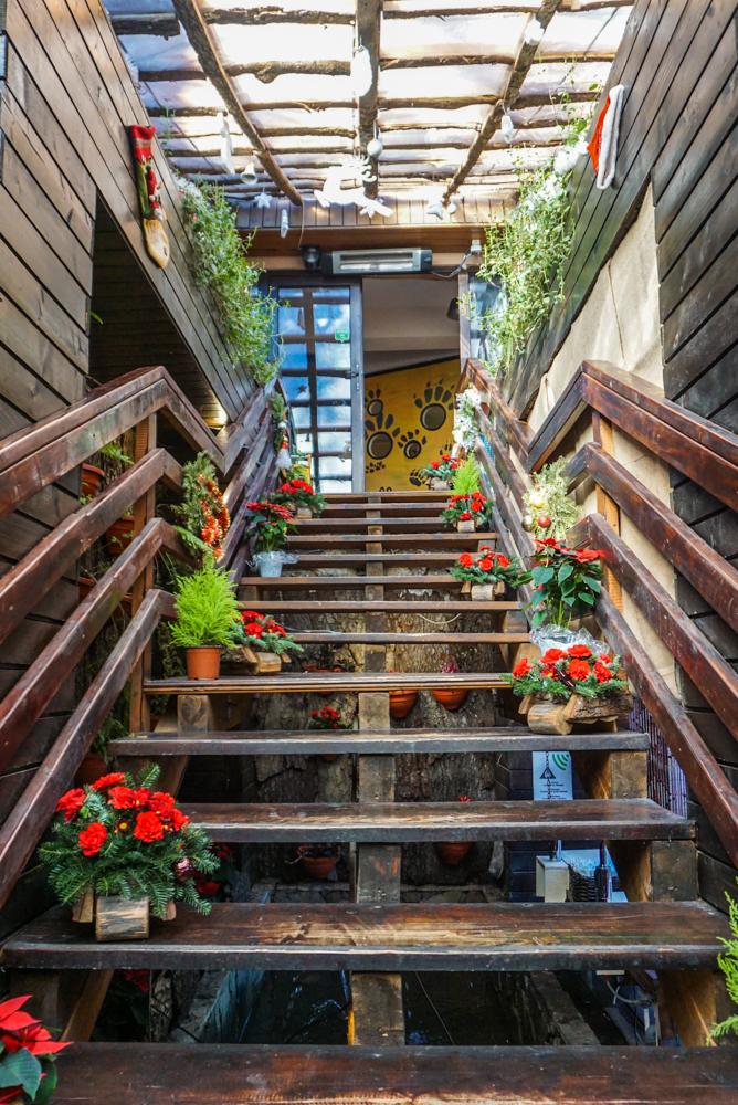 impresii Ioana Hotels Sinaia-10