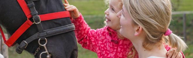 Valea Sipotului – un loc child friendly pentru toate buzunarele cu caluti unul si unul