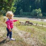 Merita sau nu sa mergi cu copiii la Valea Zimbrilor