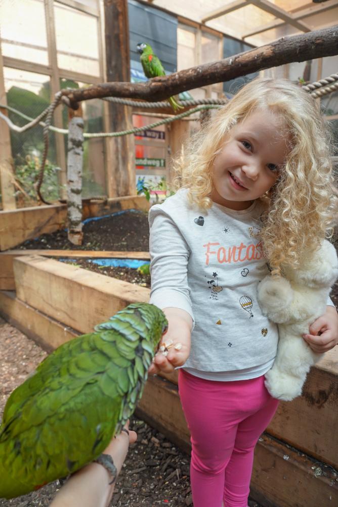 austria-cu-copii-papagali-terfens-1