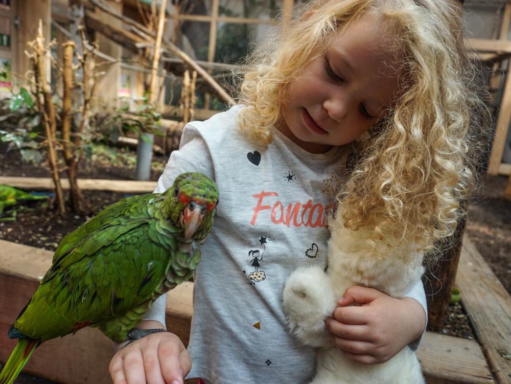 austria-cu-copii-papagali-terfens-2