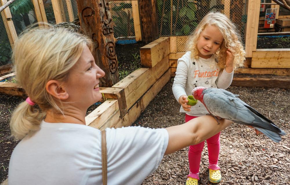 austria-cu-copii-papagali-terfens-3