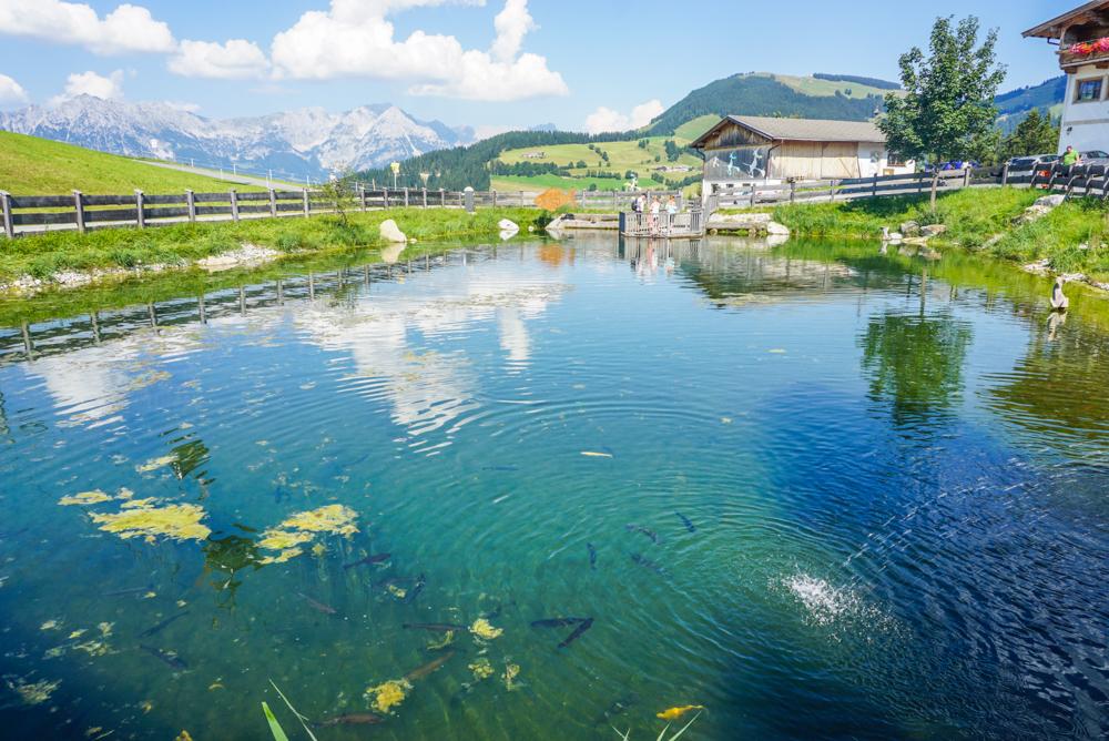 impresii-hexenwasser-austria-41