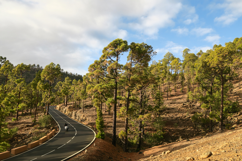 drum-teide-roadtrip-46