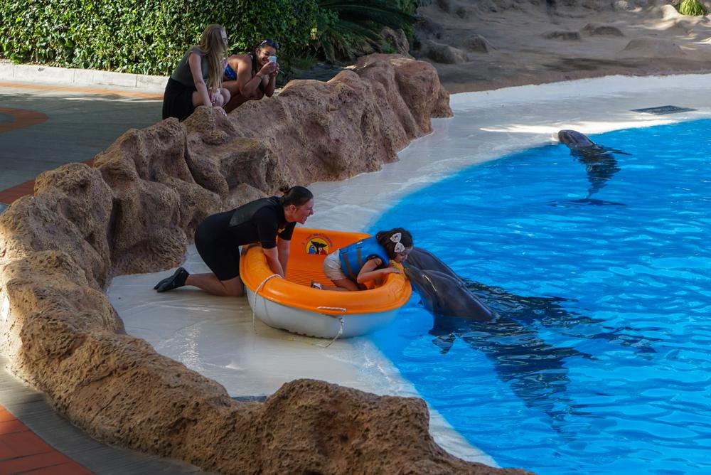 Cum a fost la <b>Loro Parque – cea mai populara gradina zoologica</b> din Europa